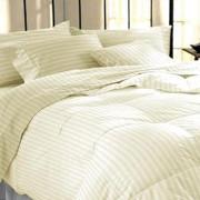 Bed Sheets (11)